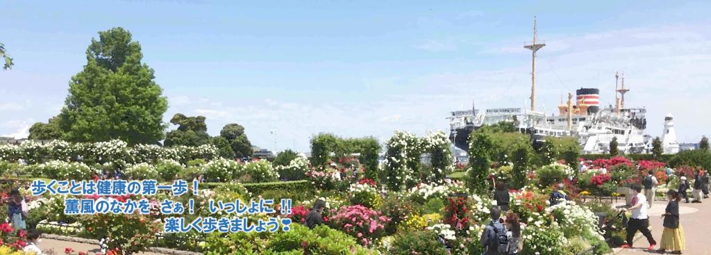 5月の山下公園